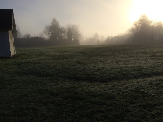 South Field Fog